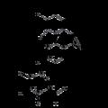 Codeine-6-glucuronide.png