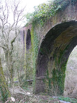Coles Mill Viaduct, Holsworthy - geograph.org.uk - 1852865