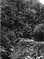 Collectie NMvWereldculturen, TM-60012783, Foto- 'Een auto passeert een kloof tussen Loeboek Sikaping en Fort de Kock', fotograaf onbekend, 1920-1926.jpg