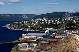 Corner Brook - Overlooking City of Corner Brook