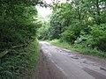 Country lane NE of Barlavington passing through The Warren - geograph.org.uk - 1377134.jpg