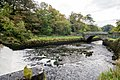 County Mayo - Westport House-Bridge 2 - 20161009174847.jpg