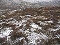 Creagan an Lochain - geograph.org.uk - 1055362.jpg