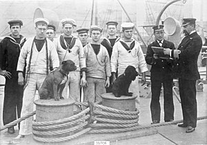 HMS Trafalgar (1887) - Officers, crewmen and two dogs on the quarterdeck, at Malta, 1897