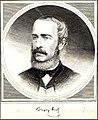 Csengery Antal Vasárnapi Ujság 1880.jpg