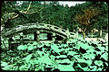 Curved stone bridge in rural area. (19955527291).jpg