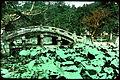 Curved stone bridge in rural area. (19955527291).jpg