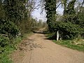 Cycle Trail - geograph.org.uk - 159484.jpg