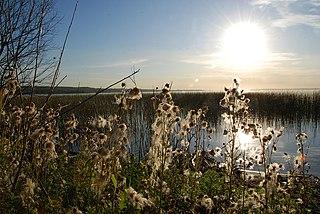 Wabamun Lake