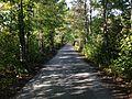 Danvers Rail Trail.jpg