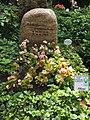 Das Grab von Edith Hancke.jpg