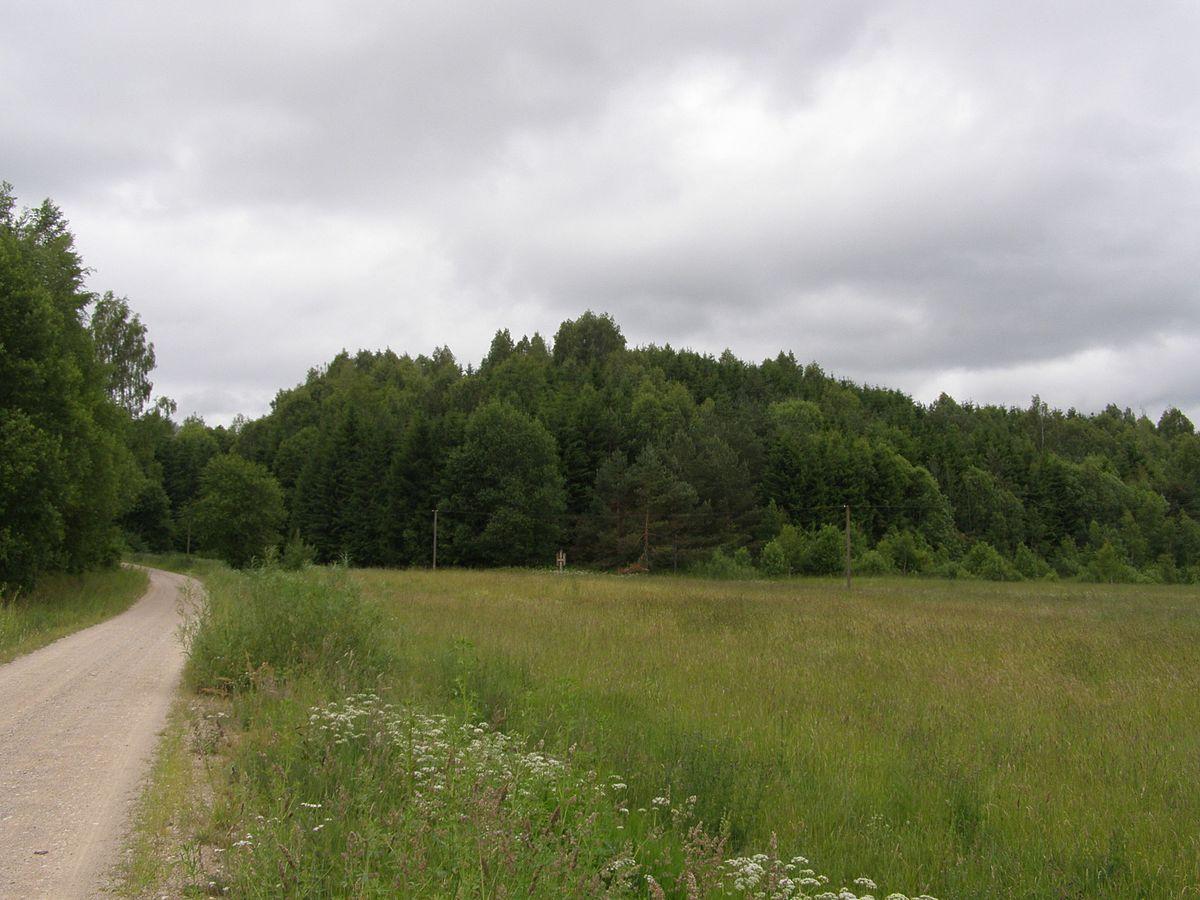Kartenos Piliakalnis Salantu Regioninis Parkas.Daugincių Piliakalnis Vikipedija