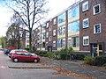 Delft - Westplantsoen - panoramio - StevenL.jpg