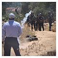 Demonstrator approaching Israeli soldiers during weekly protest against land confiscation Ni'lin July 2014.jpg