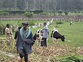 Deputy Secretary Neal Wolin's trip to Africa 2009 (4555380509).jpg