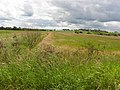 Derrylard Townland - geograph.org.uk - 2483636.jpg