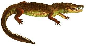 Avemetatarsalia - Image: Description des reptiles nouveaux, ou, Imparfaitement connus de la collection du Muséum d'histoire naturelle et remarques sur la classification et les caractères des reptiles (1852) (Crocodylus moreletii)