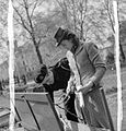 Dig For Victory- Working on An Allotment in Kensington Gardens, London, 1942 D8337.jpg
