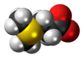 Dimethylsulfoniopropionate zwitterion 3D spacefill.png