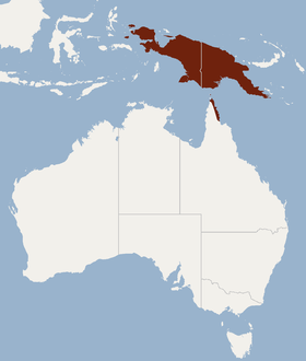 Distribution of Dobsonia magna.png