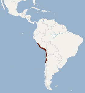 Distribution of Myotis atacamensis.png