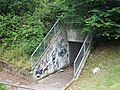 Disused Subway - geograph.org.uk - 902674.jpg