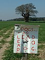 Dogs Must Be On Leads - geograph.org.uk - 384051.jpg
