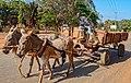 Donkey transport Tanzania.jpg
