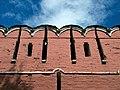 Donskoy walls 05.jpg
