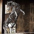 Downlands Cancara Sculpture.jpg