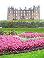 Drumlanrig, South Terrace Garden - geograph.org.uk - 1474694.jpg