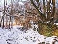 Dry stone wall - panoramio.jpg