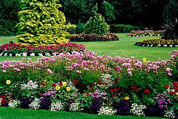 English: Dublin - Merrion Square landscaping