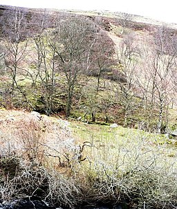 Dunmoor Hill - geograph.org.uk - 18204