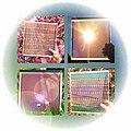Dye.sensitized.solar.cells.jpg