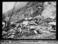 ETH-BIB-Steinbruch Personico bei der Tessin-Brücke-Dia 247-10186.tif