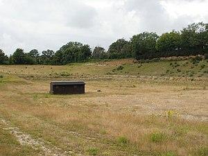 Eartham Pit, Boxgrove - Image: Eartham Pit, Boxgrove