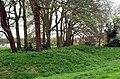 Earthworks, Oliver's Battery - geograph.org.uk - 159452.jpg