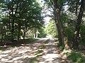 Ede - 2013 - panoramio (19).jpg