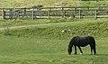 Elan Valley (22110047235).jpg