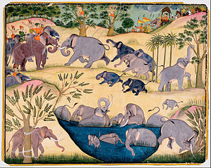 Bikaner State - Maharaja Anup Singh of Bikaner hunting elephants