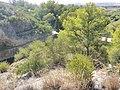 Embalse-de-Bornos-P1420754.jpg