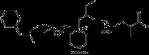 Enamine - Alkylation of an enamine and a dehydration to form a ketone.