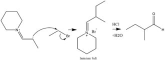 Enamine - Alkylation of an enamine and a dehydration to form a ketone.