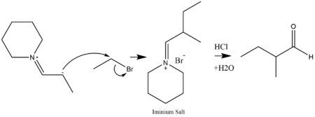 Alkylation of an enamine and a dehydration to form a ketone.