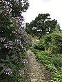 English Garden Path.jpg