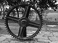 Engrenagem de antiga usina de açúcar (Gear former sugar mill) (13138679445).jpg