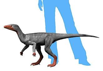 Eoraptor - Restoration