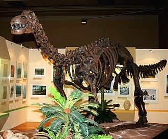 Bajo Barreal Formation - Image: Epachthosaurus