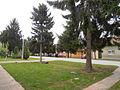 Erdevik Lenjinova ulica,broj 13, April,2012..jpg